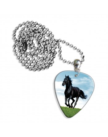 Horse necklace with plectrum