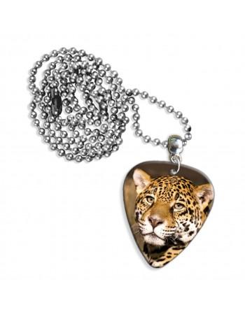 Kop van een luipaard...