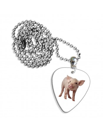 Plectrum necklace with an...