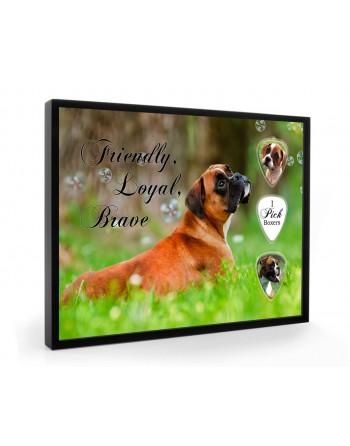 Boxer dog pick display framed