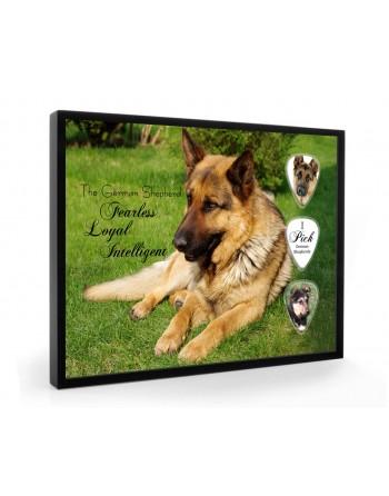 German Shepherd dog pick...