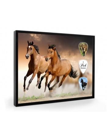 Horse pick display framed