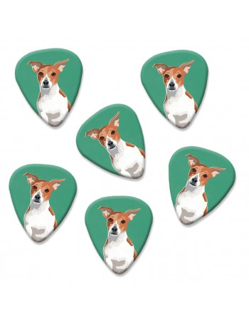 Jack Russell hond plectrums
