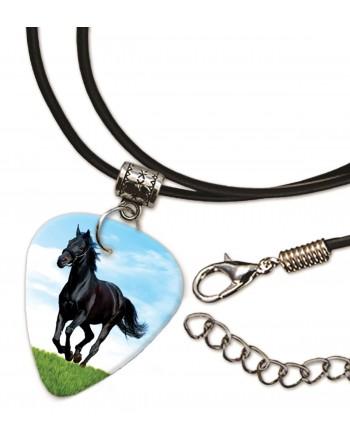 Paard ketting met plectrum