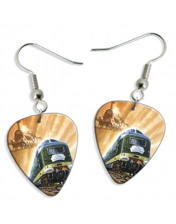 Flying Scotsman train pick...
