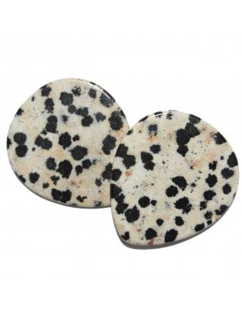 Dalmatian Jasper pick