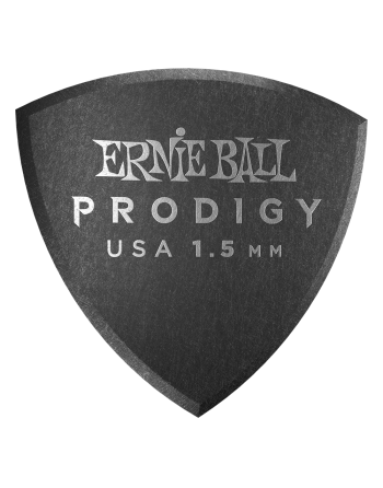 copy of Ernie Ball Prodigy...