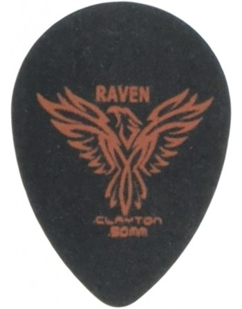 Clayton Black raven small...