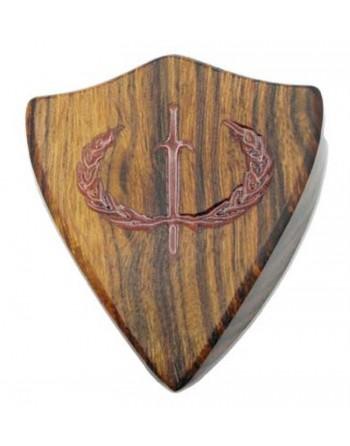 Iron Age Iron wood plectrum...
